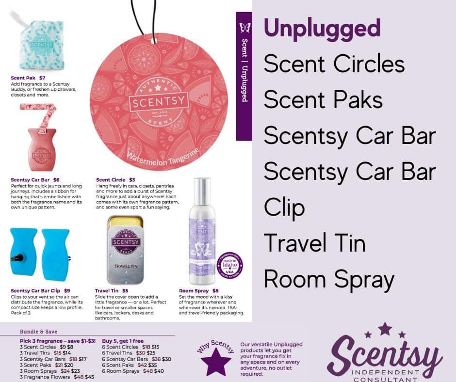 scentsy-travel-all2.jpg