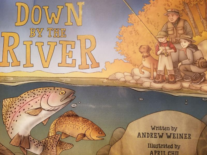 Group discount purchase for this children's FF bok