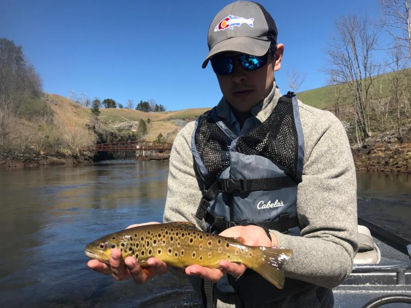 Dam Brown Trout