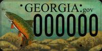 TU License Plate