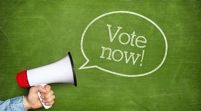 Vote-Now-bubble-Megaphone