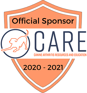 CARE official sponsor logo