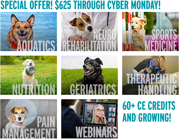 Special Offer! $625 Through Cyber Monday