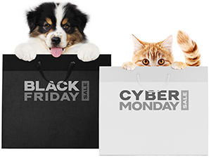 Dog and cat in Black Friday and Cyber Monday bags