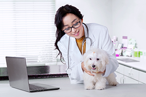 Veterinary student with white dog