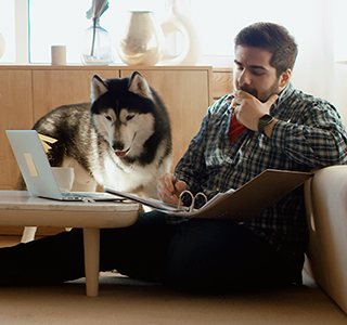 Webinar with man and dog