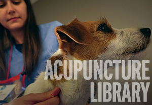 CRI Acupuncture Member Library