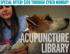 Special Offer! $195 Through Cyber Monday