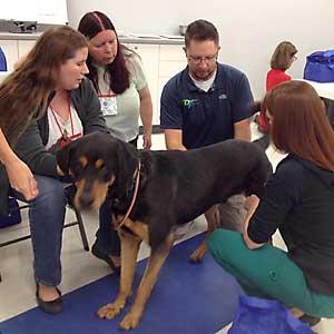 Orthotics and Prosthetics class