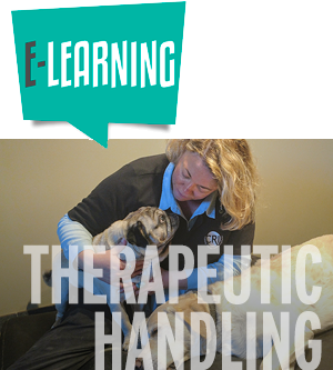 e-Learning Therapeutic Handling