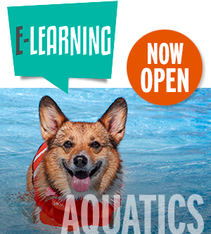 Aquatics Now Open