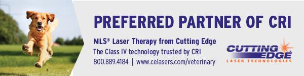 Cutting Edge Laser Technologies banner ad