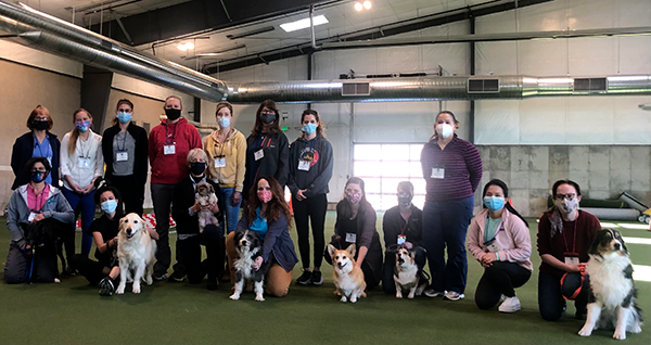Introduction to Canine Rehabilitation in-person session January 22-25, 2021