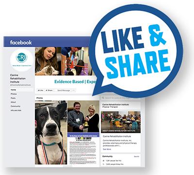 Facebook Like & Share