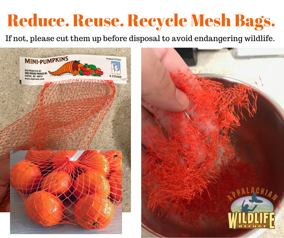 Reduce Reuse Recycle Mesh Bags - Or cut them up
