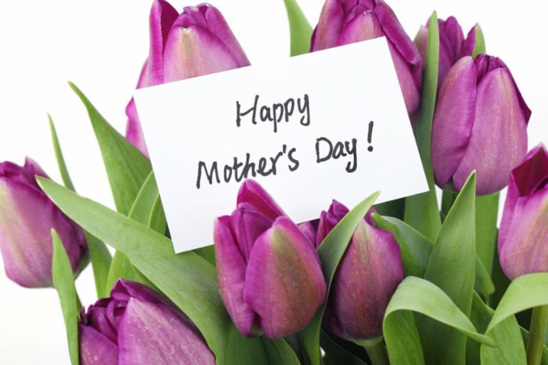 purple_mothersday_concept.jpg