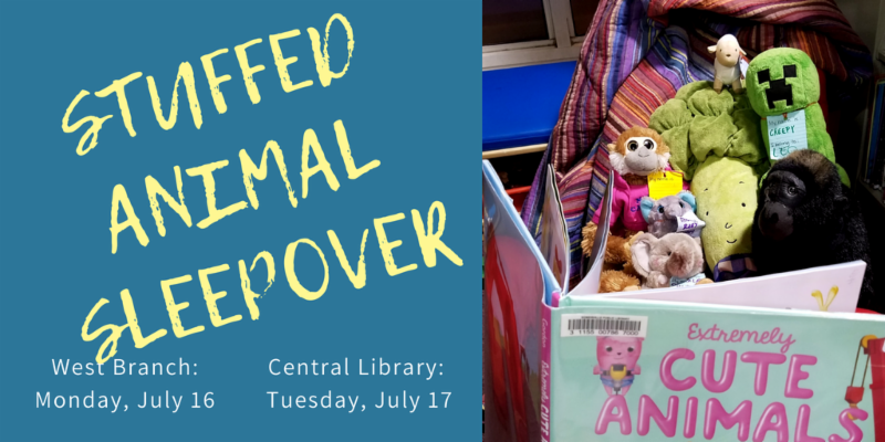 stuffed animal sleepover on july 16 at west branch_ july 17 at central