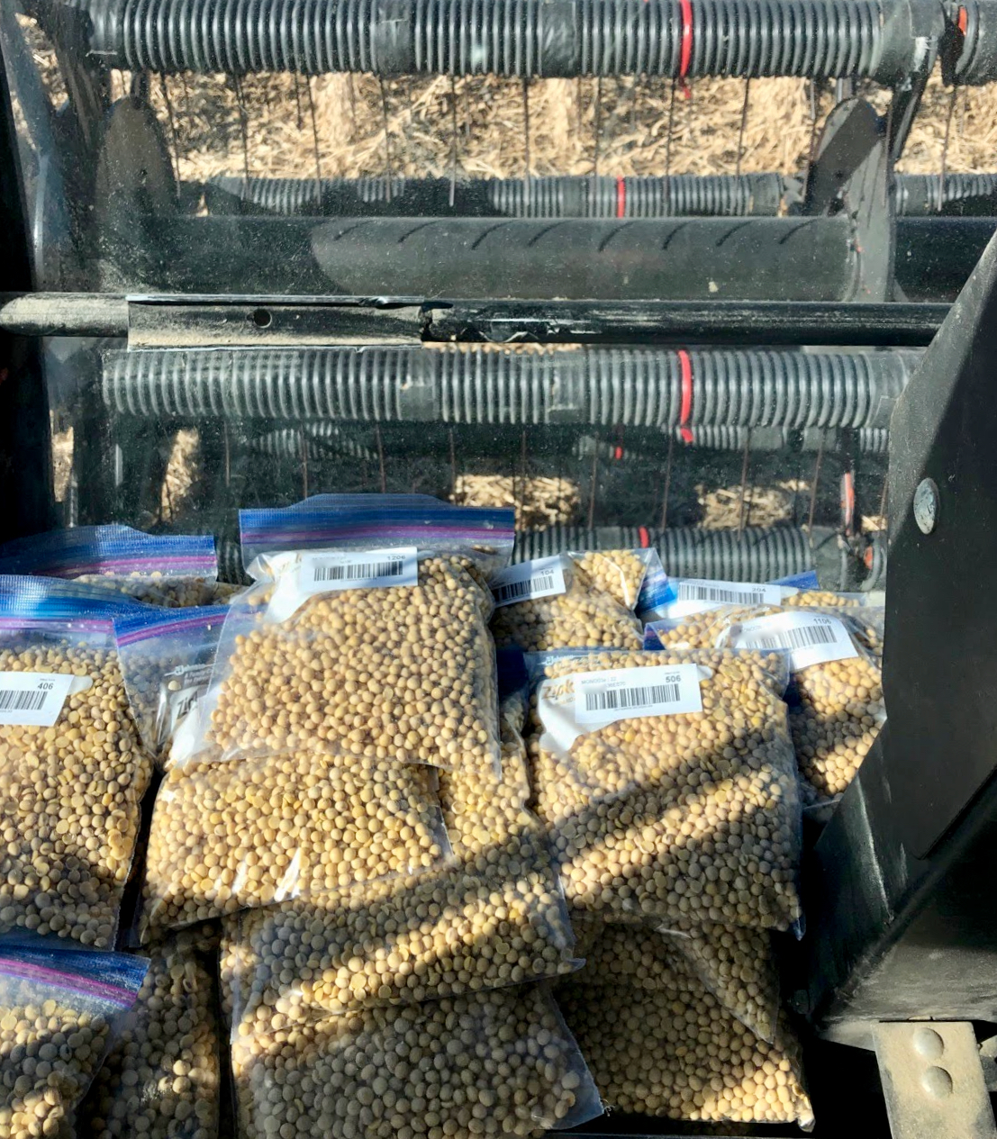 Soybean samples collected in MO 2020