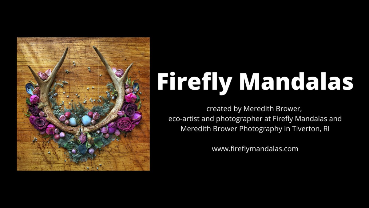 Firefly Mandalas Exhibit