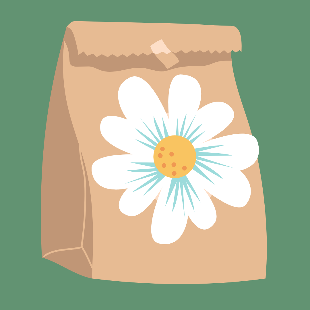 Illustration of a paper bag with a large daisy on it.
