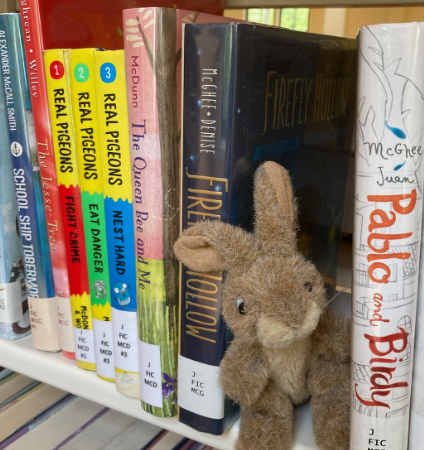 Photo of a stuffed bunny peeking out from a shelf of children's books