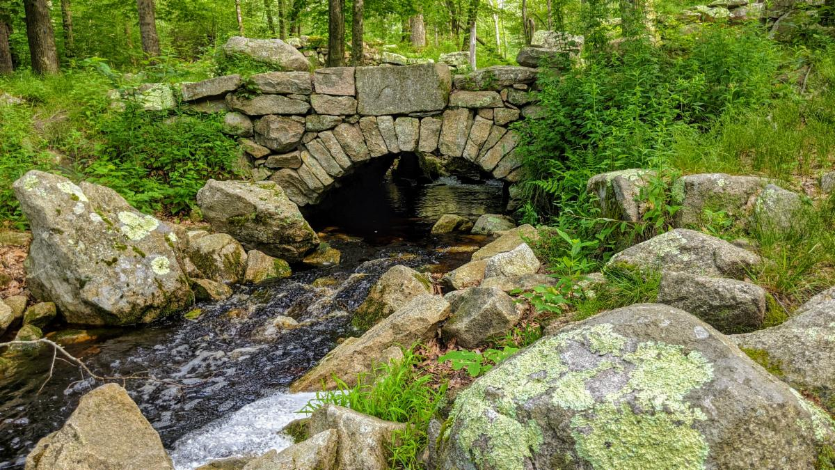 Photo of arched bridge in Weetamoo Woods