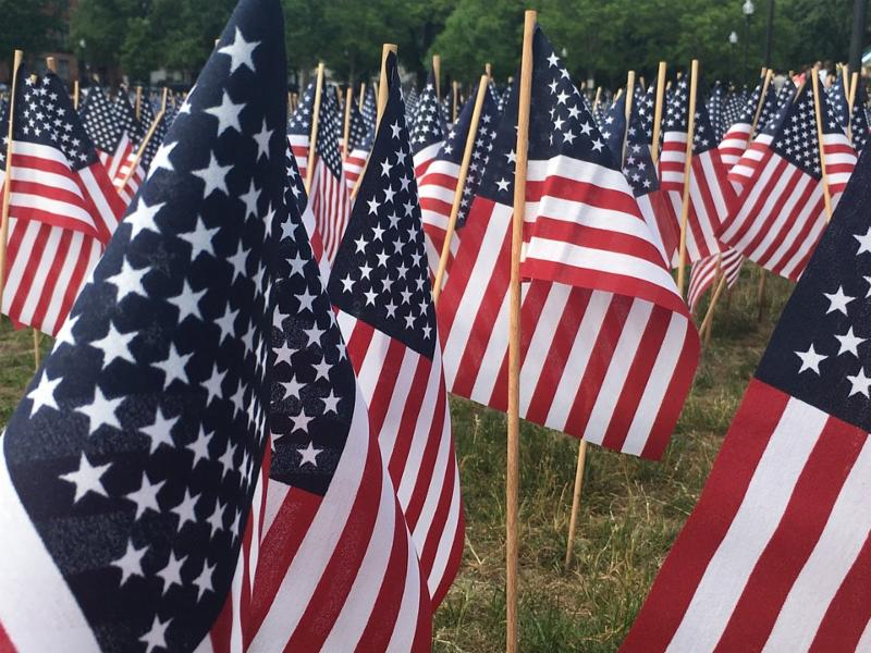 Image of several small flags staked in the ground