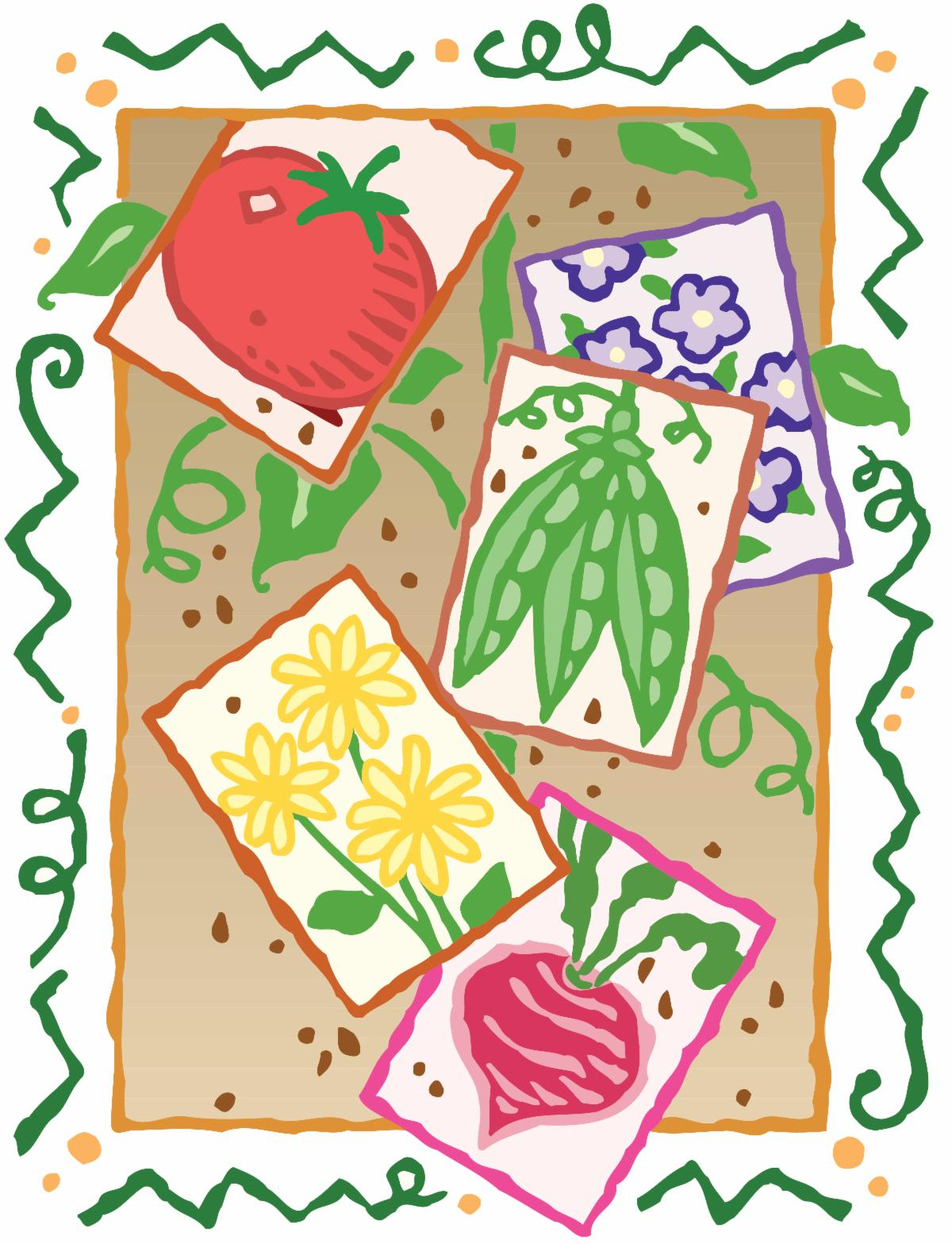 Illustration of various vegetable and flower seed packets