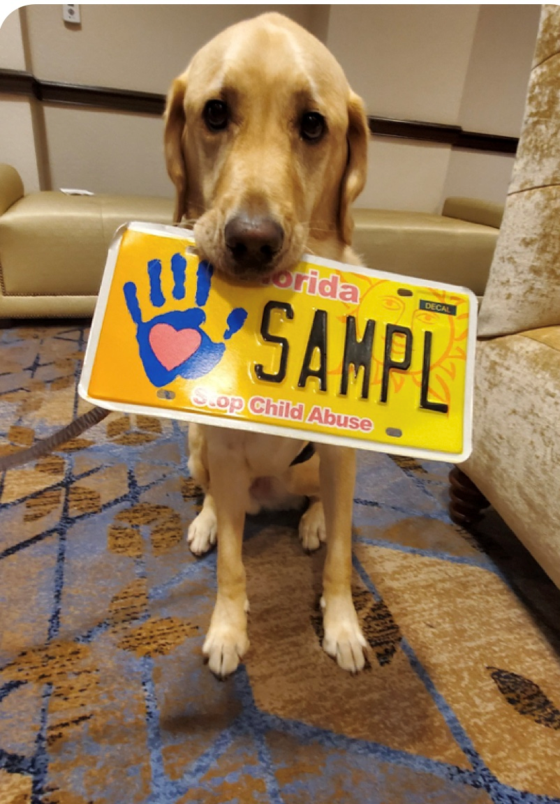Facility Dog with License Tag.png