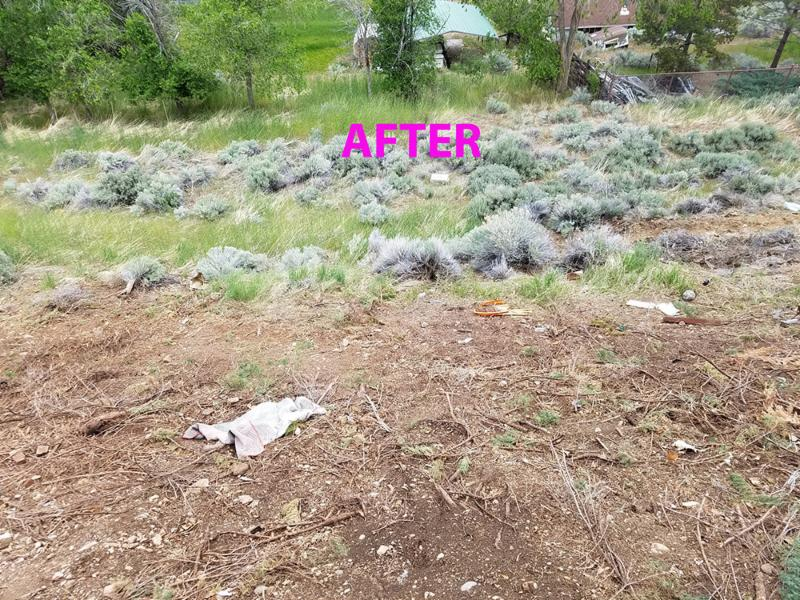 A picture of bare dirt and sage brush. The word 'after' is on the photo.