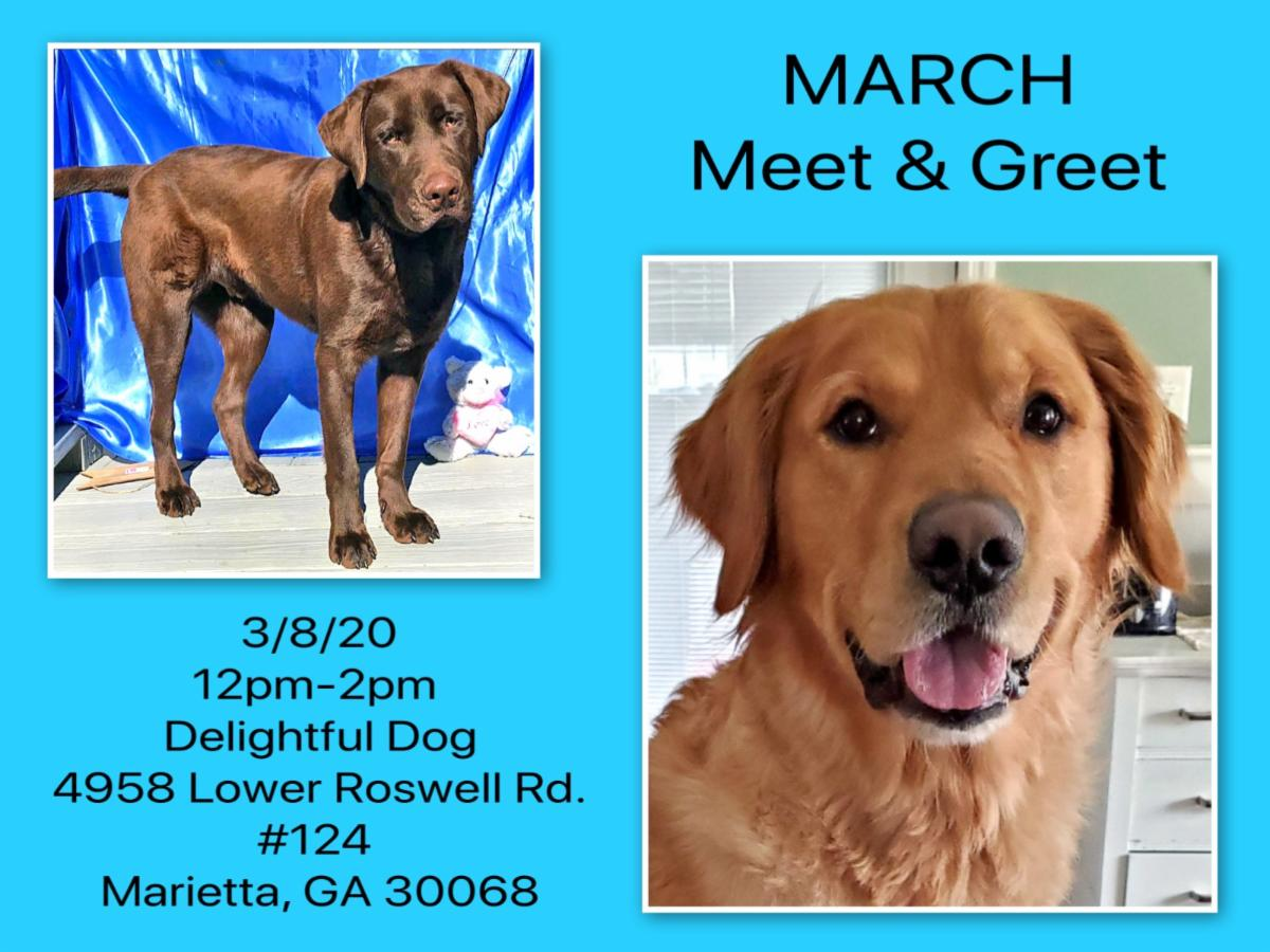 March Meet and Greet