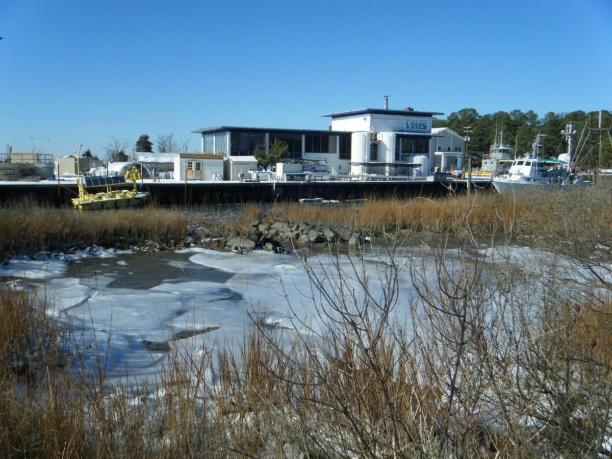 photo of a marsh in winter in foreground and Virginia Institute of Marine Science building and boats in background