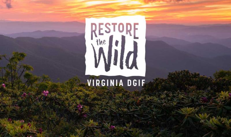 mountain landscape with Restore the Wild Virginia DGIF logo