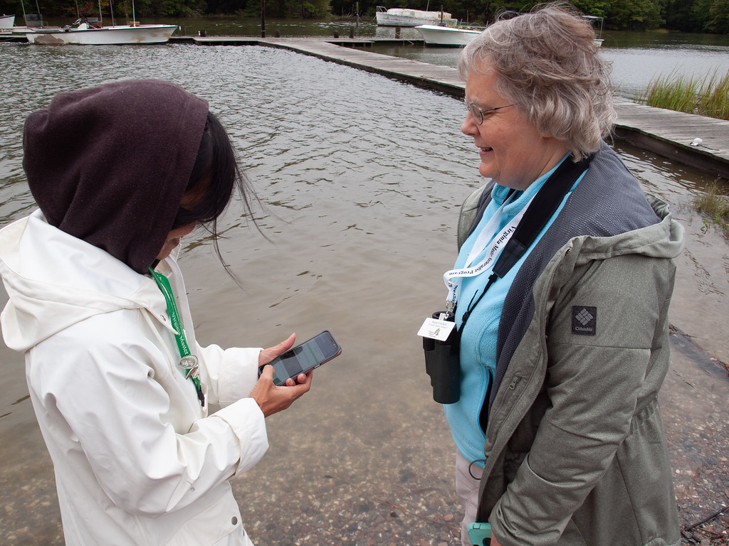 two people looking at cell phone next to dock at high tide