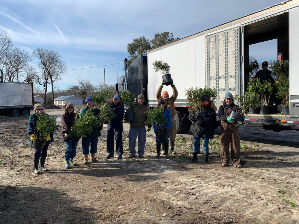 Eleven people outside unloading potted shrubs from a large truck
