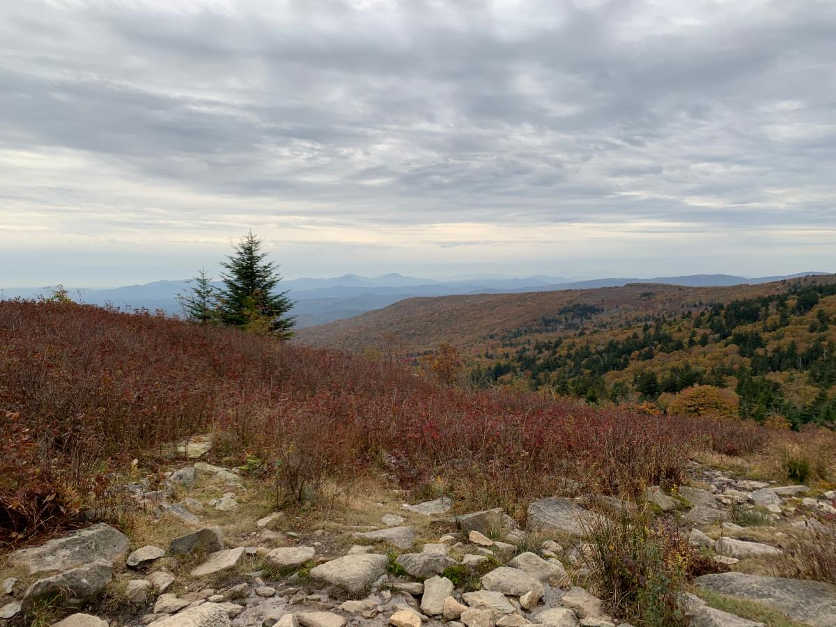 landscape photo of rocky foregound, mountains in background with fall colors, cloudy sky