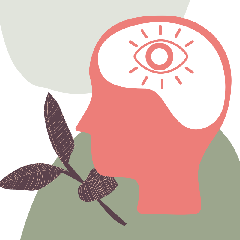 Illustration of a person's profile. The brain section is highlighted and contains an eye in it. There is a twig with leaves beside the head.