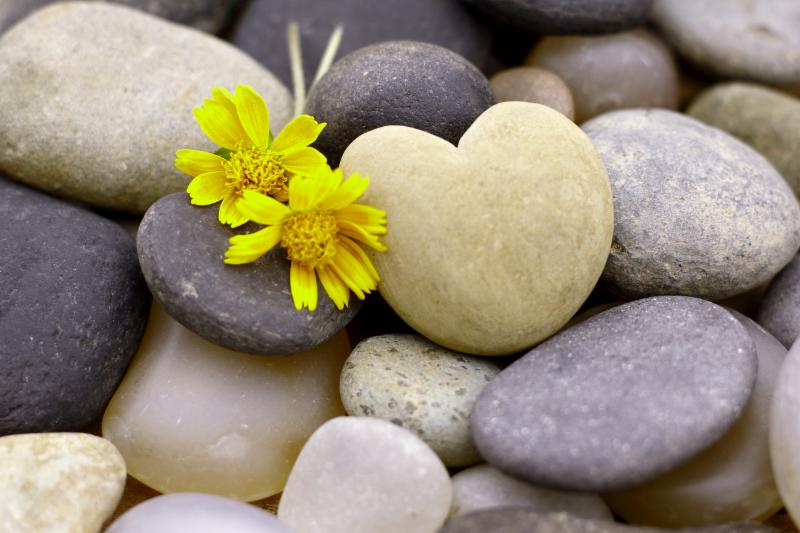 heart stone with 2 yellow flowers