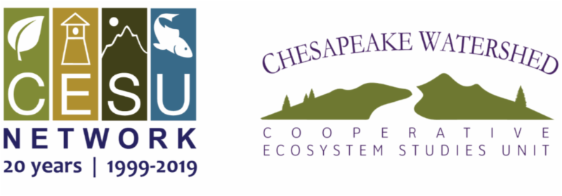 CESU National 20th Anniversary logo with the CHWA CESU logo