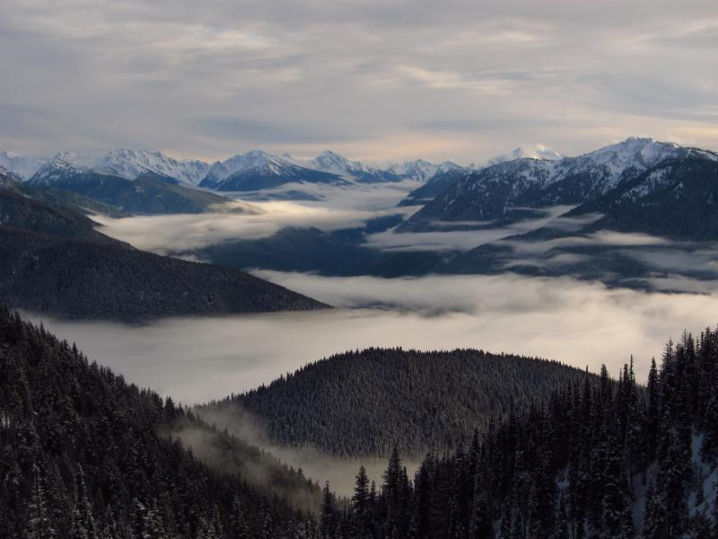 Hurricane Ridge in Winter. NPS Photo.