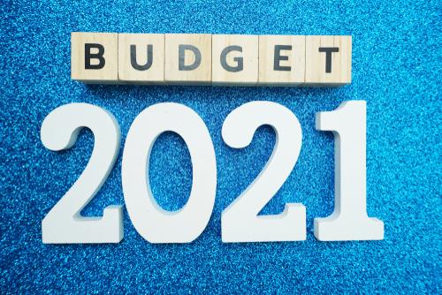 budget 2021 - photo #2