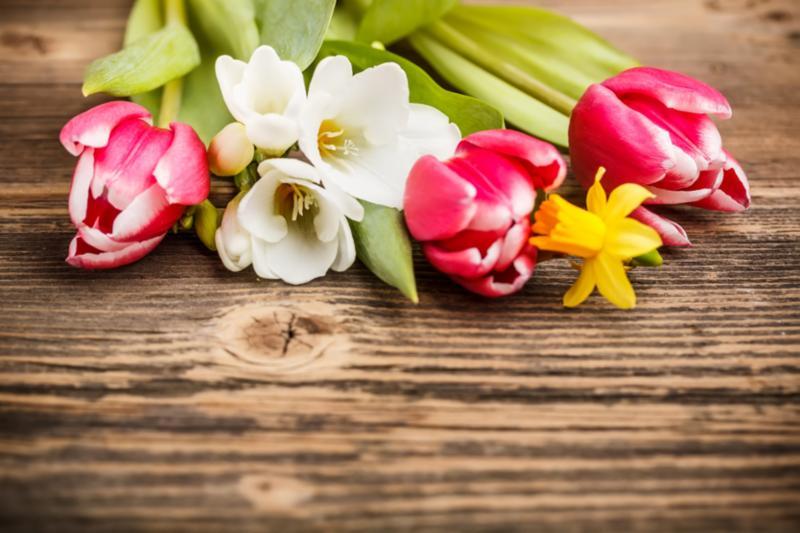 spring_flowers_wood.jpg