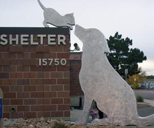 image of public art outside the aurora animal shelter