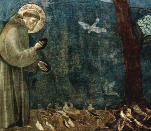 Giotto's St Francis of Assisi