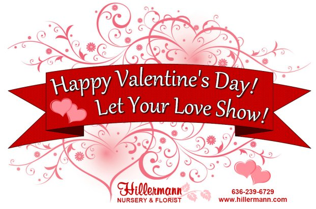 Happy Valentine's Day graphic with the Hillermann logo and information