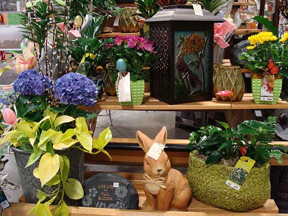 Plants and Items available at Hillermann Nursery and Florist
