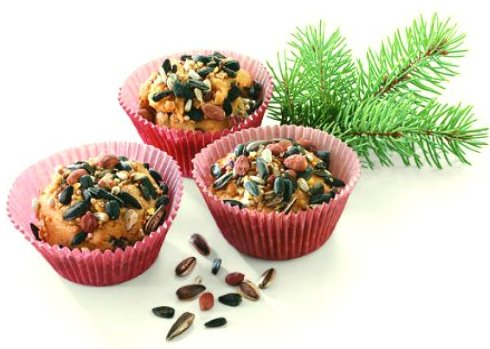 Bird suet cup cake feeders from Birds and Blooms