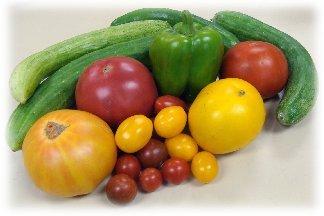 Fresh picked garden vegetables