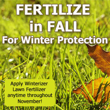 Picture of grass blades and reminder text - Fertilize in Fall for Winter Protection