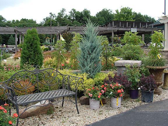 Nursery plant display at Hillermann Nursery and Florist